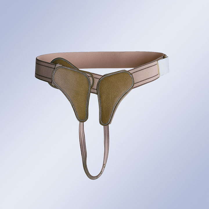 REINFORCED TRUSS WITH BUCKLE FASTENING