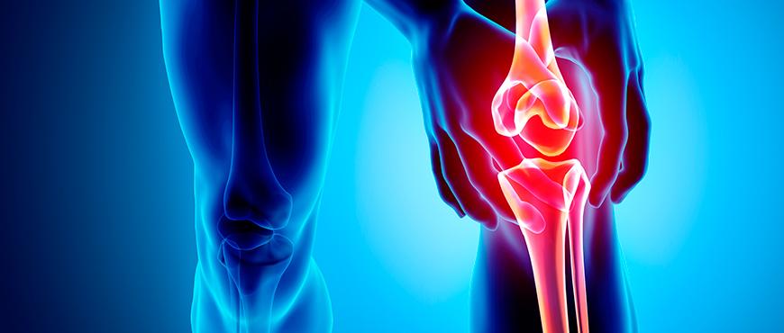 Ejercicios para dolor de espalda Guías e informes