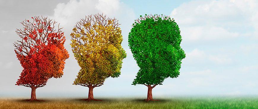 Cómo mejorar la calidad de vida de los enfermos de Alzheimer